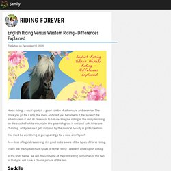 English Riding Versus Western Riding - Differences Explained - Riding Forever - 5amily