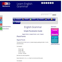 Pluralisation Guide - Plural Noun Forms