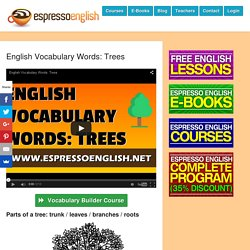 English Vocabulary Words: Trees