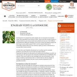Engrais vert: La Consoude, Engrais verts, Comment réussir la culture de..., Conseils et Idées