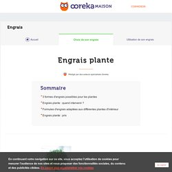 Engrais plante d'intérieur - Ooreka