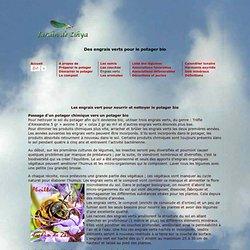 Les Engrais verts du potager biologique sont des engrais propres.
