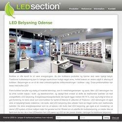 LED Belysning Odense