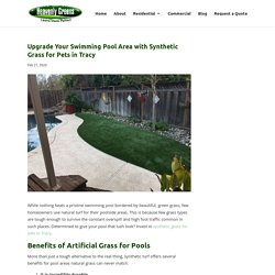 Enhance Your Pool Experience with Synthetic Grass for Pets in Tracy
