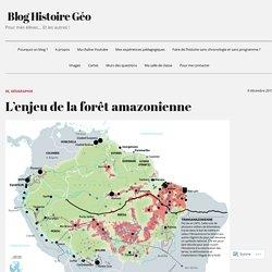 L'enjeu de la forêt amazonienne – Blog Histoire Géo