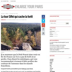 Enlarge Your Paris - La tour Eiffel qui cache la forêt - Libération.fr