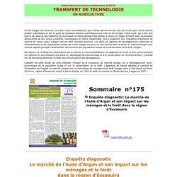 BTT 175: Enquête diagnostic: Le marché de l'huile d'Argan et son impact sur les ménages et la forêt dans la région d'Essaouira
