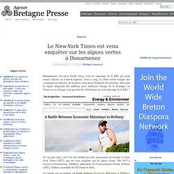 Le New-York Times est venu enquêter sur les algues vertes à Douarnenez