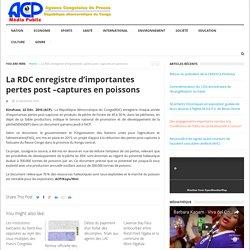 La RDC enregistre d'importantes pertes post –captures en poissons - Agence Congolaise de Presse (ACP)