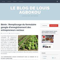 Bénin : Remplissage du formulaire google d'enregistrement des entrepreneurs sociaux – Le Blog de Louis Agbokou