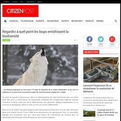 Regardez à quel point les loups enrichissent la biodiversité
