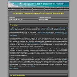 Les Sections d'Enseignement Général et Professionnel Adapté (SEGPA)