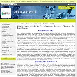 Collège Jean Dasté - Enseignement FLE / SCO : Français Langue Etrangère / Seconde de Scolarisation