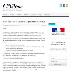 Groupe de travail sur l'enseignement supérieur – Conseil National du Numérique