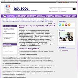 Enseignements adaptés - Sections d'enseignement général et professionnel adapté
