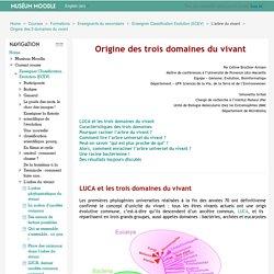 Enseigner Classification Evolution (ECEV): Origine des 3 domaines du vivant