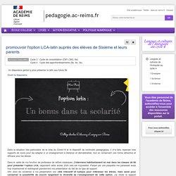 Un exemple d'initiation présenté pour l'académie de Reims