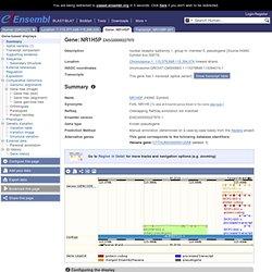 genome browser 57: Homo sapiens - Gene summary - Gene: NR1H5P (E