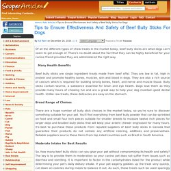 Tips to Ensure Effectiveness And Safety of Beef Bully Sticks For Dogs