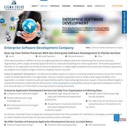 Top Enterprise Software Development Company In Florida