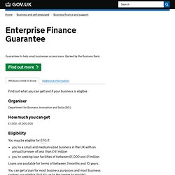 Enterprise Finance Guarantee