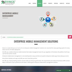 Enterprise Mobile Management, Enterprise Mobile Solutions