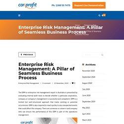 Enterprise Risk Management: A Pillar of Seamless Business Process