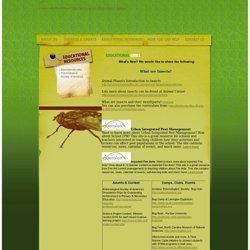 The Entomological Foundation - Educational Resources: Educational Links