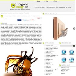 L'entomologie imaginaire d'Insect Lab