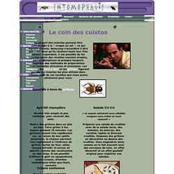 entomophagie : Des recettes pour cuisiner les insectes