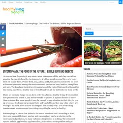 Edible Bugs and Insects - Healthy Living Benefits