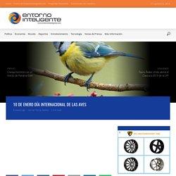 10 de Enero Día Internacional de las Aves - EntornoInteligente