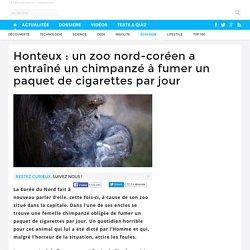 Honteux : un zoo nord-coréen a entraîné un chimpanzé à fumer un paquet de cigarettes par jour