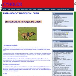 ENTRAINEMENT PHYSIQUE DU CHIEN