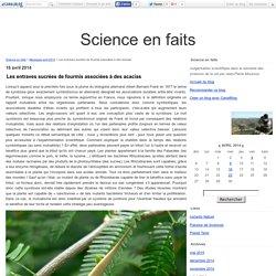 Les entraves sucrées de fourmis associées à des acacias - Science en faits
