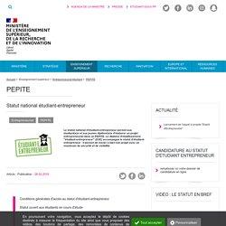 Statut national étudiant-entrepreneur - Ministère de l'Enseignement supérieur, de la Recherche et de l'Innovation