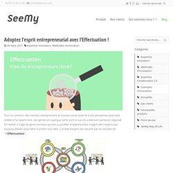 Adoptez l'esprit entrepreneurial avec l'Effectuation! - SeeMy : Plateforme collaborative pour l'innovation