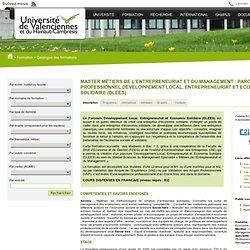 Univ Valenciennes Master Métiers de lEntrepreneuriat et du Management - Master MEM : Parcours Professionnel (DLEES)