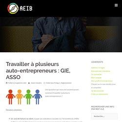 Travailler à plusieurs auto-entrepreneurs : GIE, ASSO - AEIB – Association de solo-entrepreneurs (auto-entrepreneurs, freelances, portage)