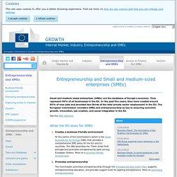 Entrepreneurship and Small and medium-sized enterprises (SMEs)