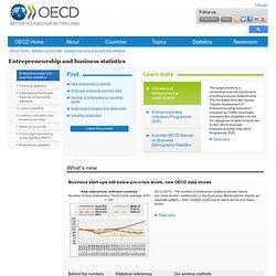 Entrepreneurship and business statistics