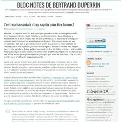 Bertrand Duperrin, rubrique E2.0