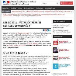 Loi de 2011 : votre entreprise est-elle concernée ? – Ministère des Familles, de l'Enfance et des Droits des femmes