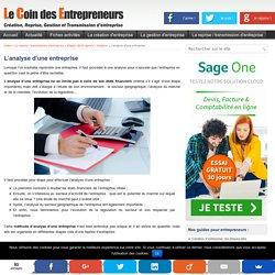 L'analyse d'une entreprise : Analyse financière et économique de l'entreprise