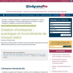 Création d'entreprise : avantages et inconvénients de chaque statut - Choisir le statut juridique de sa structure - Studyrama Pro