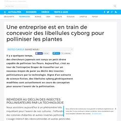 Une entreprise est en train de concevoir des libellules cyborg pour polliniser les plantes