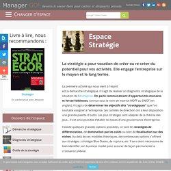 La stratégie d'entreprise, diagnostic et management stratégique