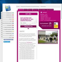 DUT Gestion des Entreprises et des Administrations (GEA) Reims