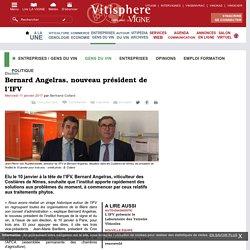 Entreprises / gens du vin : Bernard Angelras, nouveau président de l'IFV