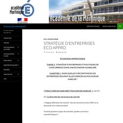 Stratégie d'entreprises Eco Appro